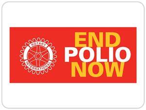 Run to end polio